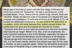 Prophet-Micah-biography